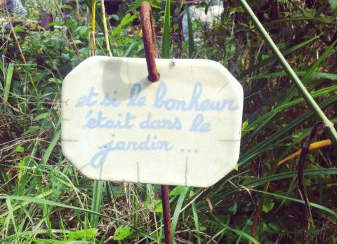 Animation variées sur le jardinage : « A vos binettes » par le CINE le 07 juin