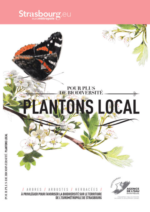 Plantons local