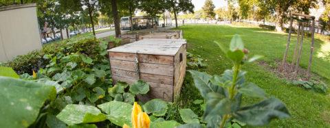 """Atelier """"A vos binettes !"""" - Récolte du compost et nouveau tas le 16 octobre"""