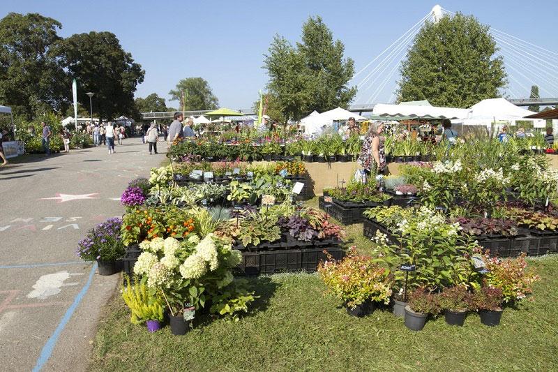 19ème Fête des plantes les  23-24 septembre au Jardin des 2 rives.