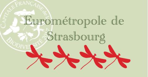 Strasbourg « Meilleure grande ville pour la biodiversité 2017 »