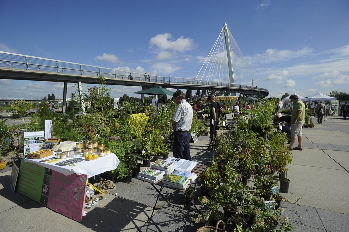Les 22 et 23 septembre : fêtons les plantes et la botanique au cœur des jardins du Palais Universitaire de Strasbourg !
