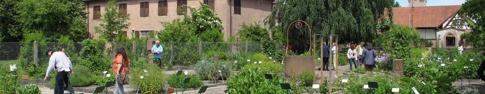 Troc de plantes au jardin monastique d'Eschau le 13 octobre