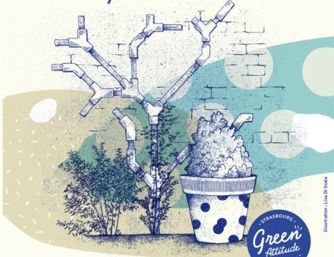 Atelier Fabrique ton support pour plantes grimpantes les 28 novembre, 08 et 19 décembre