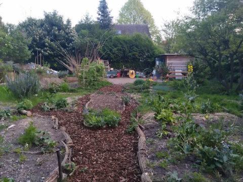 « Le temps de jardinage » de juin au Jardin partagé du Fridolin
