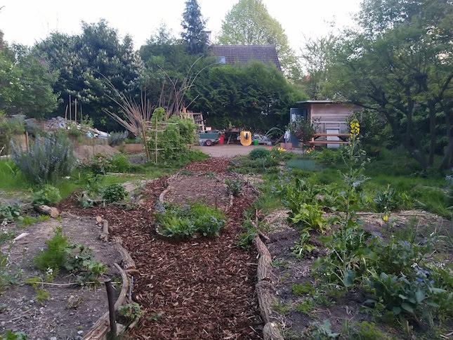 Les temps de jardinage 3, 10, 17, 24 août au Koenigshoffen