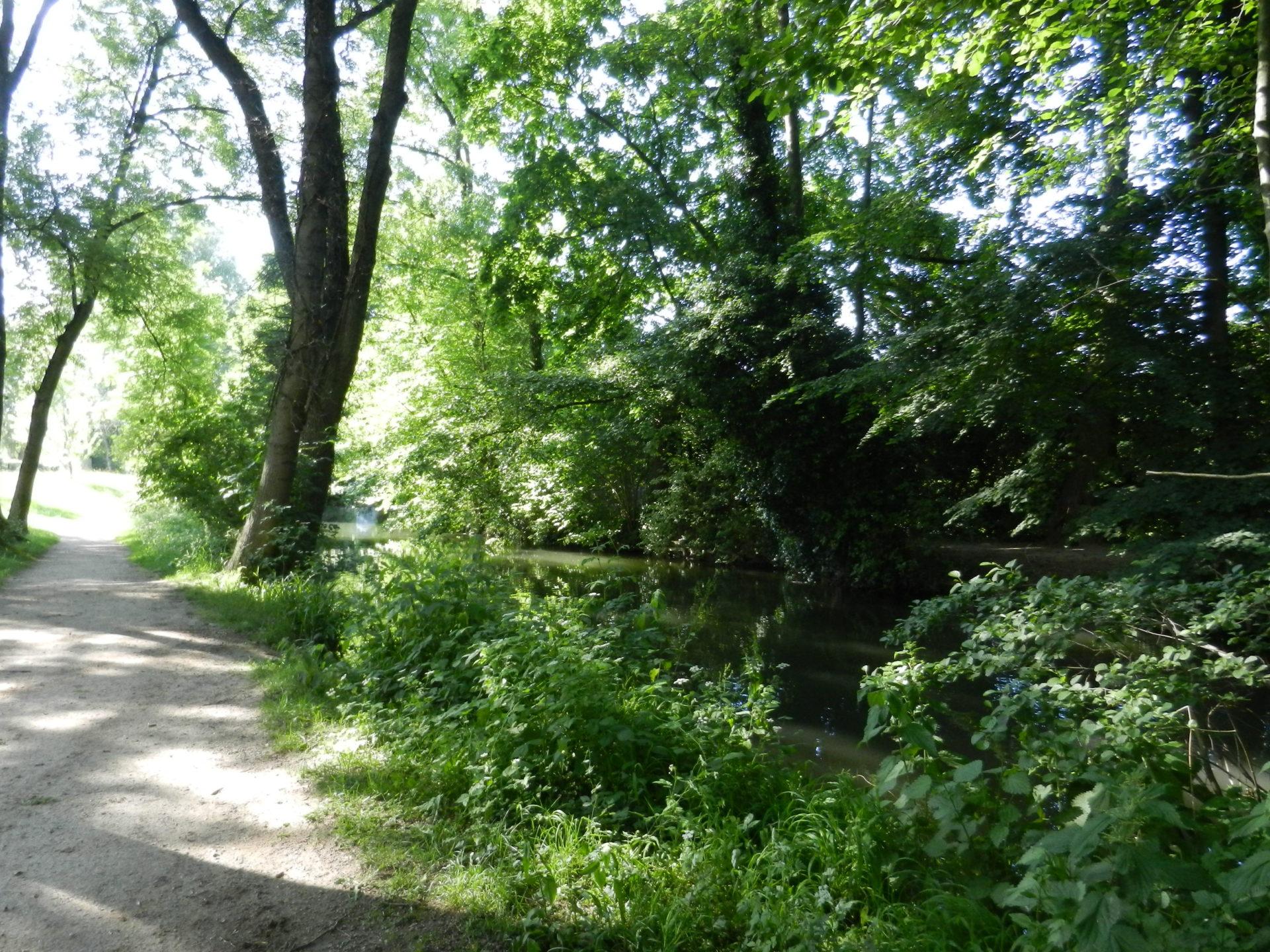 Sortie nature : Ambiance d'automne le long du Rhin Tortu le 5 octobre