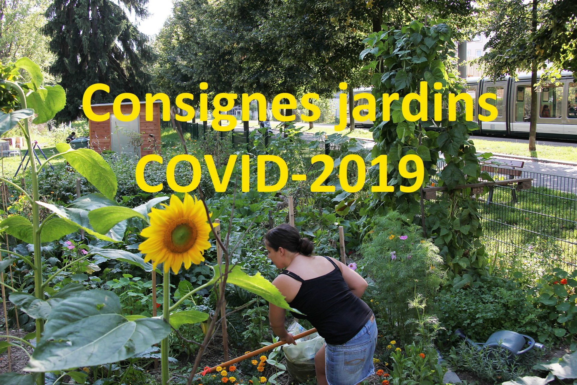 MESSAGE AUX JARDINIERS - COVID2019