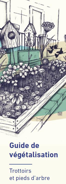 Guide de végétalisation  : Trottoirs et pieds d'arbre