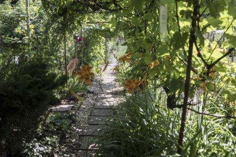 Du 3 au 31 mai 2021 : Candidatez pour le concours Eco-jardinier de Strasbourg !